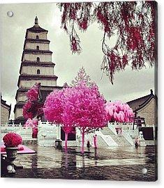 Instagram Photo Acrylic Print