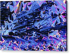Liquid Crystalline Dna Acrylic Print by Michael W. Davidson