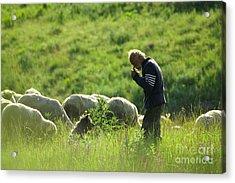 Shepherd Acrylic Print by Odon Czintos