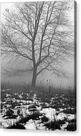 Tippecanoe County Indiana Acrylic Print by Marsha Williamson Mohr