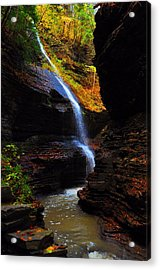 Watkins Glen State Park New York   Acrylic Print by Puzzles Shum
