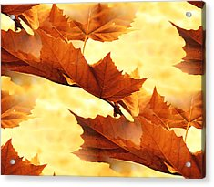Autumn Acrylic Print by Design Windmill
