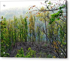 Splendors Of Himalayas Acrylic Print by Anand Swaroop Manchiraju