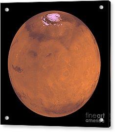 Mars Acrylic Print by Stocktrek Images