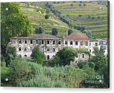 Douro River Valley Acrylic Print by Arlene Carmel