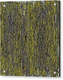 A Beautiful Dream IIi Acrylic Print by James Mancini Heath