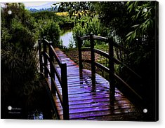 A Bridge Over Troubled Water Acrylic Print by Itzhak Richter