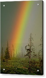 A Brilliantly Colored Rainbow Ends Acrylic Print by Norbert Rosing