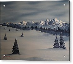 A Cold Winter Slope Acrylic Print by John Koehler