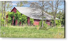 A Country Spring Acrylic Print by JC Findley