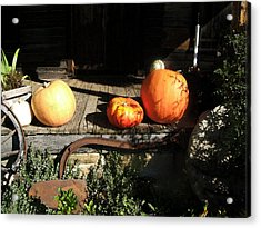 Acrylic Print featuring the photograph A Country Thanksgiving by George Bostian