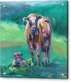 A Cow And Her Calf Acrylic Print by Donna Tuten