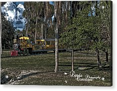 A Day On The Sarengeti Acrylic Print by Linda Constant