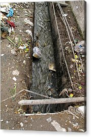 A Dirty Drain With Filth All Around It Representing A Health Risk Acrylic Print by Ashish Agarwal