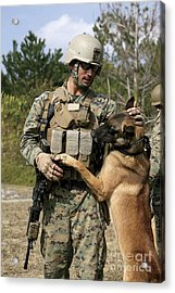 A Dog Handler Gives Positive Acrylic Print by Stocktrek Images
