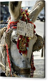 A Donkey Taxi In A Village Of Spain Acrylic Print by Perry Van Munster