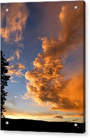 A Dramatic Summer Evening 1 Acrylic Print by Will Borden