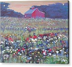 A Field Of Flowers Acrylic Print by Kip Decker