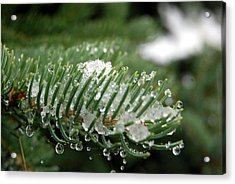 Acrylic Print featuring the photograph A First Snowfall by Harvey Barrison
