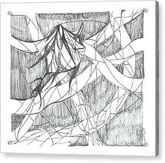 A Fish Acrylic Print by Robert Meszaros