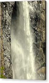 A Force Of Nature Acrylic Print by Lynn Bauer