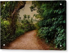 A Green Mile Acrylic Print by Robin-Lee Vieira