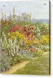 A Herbaceous Border Acrylic Print by Helen Allingham