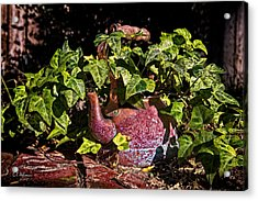 A Kettle Of Greens Acrylic Print by Christopher Holmes