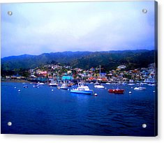 A Misty Morning In Avalon Harbor Acrylic Print by Catherine Natalia  Roche