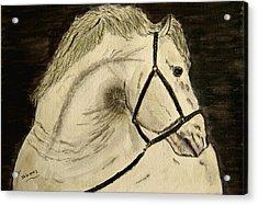 A Noble Horse. Acrylic Print