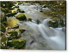 A Painted Stream Acrylic Print by Jeff Rose