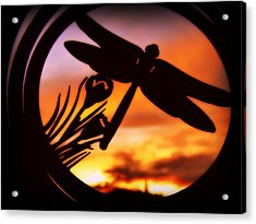 Acrylic Print featuring the photograph A Peaceful Dragonfly Sunset by Cindy Wright