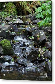 Acrylic Print featuring the photograph A Peaceful Stream by Chalet Roome-Rigdon