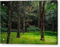 A Place To Unwind Acrylic Print by Scott Hervieux