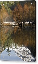 A Reflection Of Fall Trees In Mirror Acrylic Print by Rich Reid