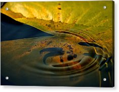 A Ripple In Time Acrylic Print by Rachel Rodgers