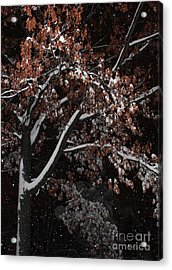 A Rustic Snow Acrylic Print
