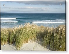 A Scenic Hillside Of The Beach Acrylic Print by Bill Hatcher