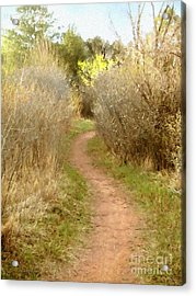 A Single Path Acrylic Print by Cristophers Dream Artistry