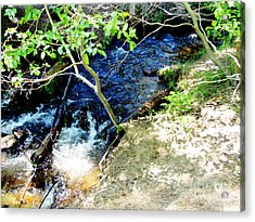 A Small Creek Acrylic Print