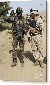 A Spanish Marine Points Out An Acrylic Print by Stocktrek Images