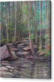 A Special Place Acrylic Print by Penny Neimiller