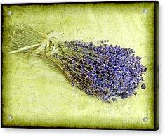 A Spray Of Lavender Acrylic Print by Judi Bagwell