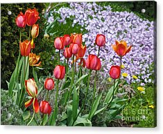 A Spring Feast Of Colours Acrylic Print