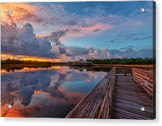 A Storm Is Brewing Acrylic Print by Claudia Domenig