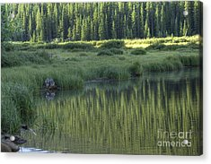 A Study In Green Acrylic Print by David Bearden