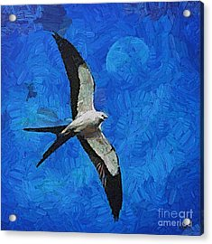 A Swallow And The Moon Acrylic Print by Dragica  Micki Fortuna