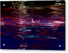 A Swimming Duck Breaks Up The Colorful Acrylic Print by Stephen St. John