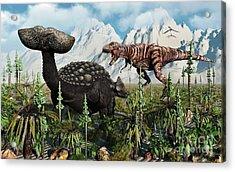 A T. Rex Confronts An Ankylosaurus Acrylic Print