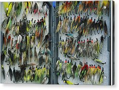 A Tackle Box Full Of Colorful Flies Acrylic Print by Bill Curtsinger